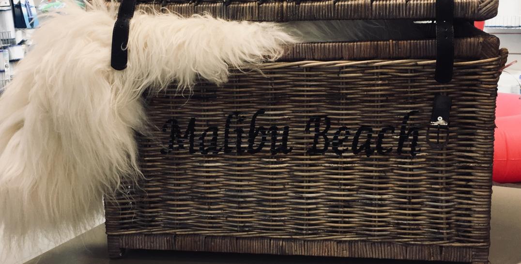 Malibu baech