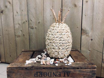 157027 Cornrope Pineapple 22x36cm