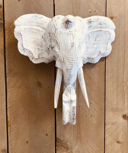 Bali olifant